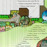 Close up of a planting scheme in color.