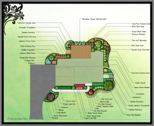 Color plans for the plantings. House and driveway simply blocked out.