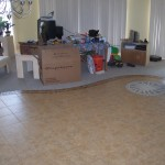 Ribbon of tile acting as a transition between the larger tile and the carpet in the living room.