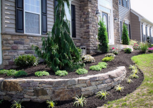 Stone veneer work and vinyl siding are a very popular mix.