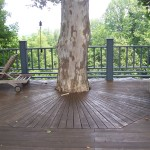 Working with nature, Sunburst pattern in a deck.